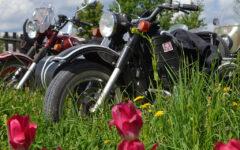 voyage-moto-russie-ural-bmw-gs-ride-n-be-32